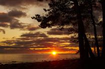 Заказ на берегу Финского залива