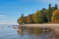 Краски осени на берегах Финского залива