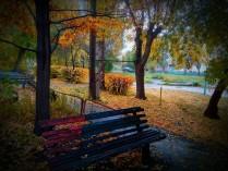 Осенняя палитра 3
