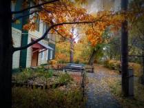 Осенняя палитра 4