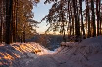 Закат в подмосковном лесу