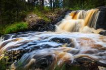 Золото  карельских водопадов.