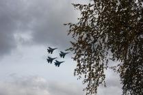 От чего так в России березы шумят...