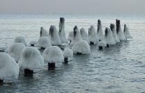 Ледяные морские грибы