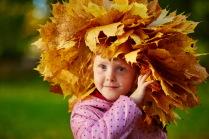Рыжик в желтых листьях