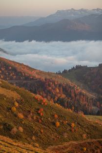 Золотые закаты осени