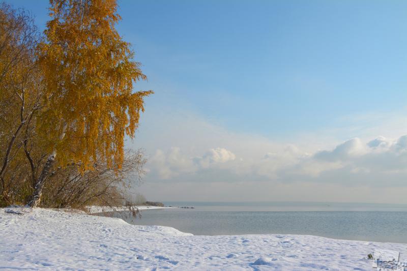 Торопливая Зима.