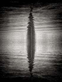 Отражение Волги в себе самой