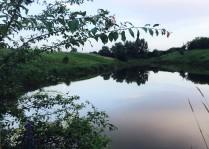 Тихий вечер над сонною рекою