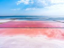 Соляные бассейны на озере Сасык-Сиваш