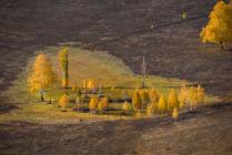 Осенний оазис в виде сердца