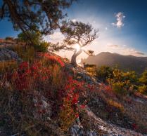 Осеннее свечение Крыма