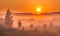 Туманное летнее утро