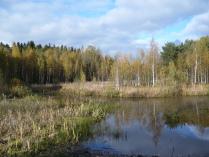 Синее небо, синяя вода, золотая осень...