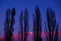 Закат в Курьяново