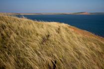 Сильный ветер над озером