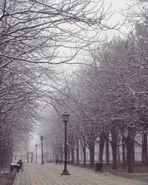 Утром в парке Плевен