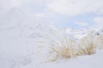 В пелене Кавказских гор