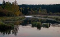 Спокойная осень