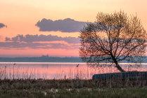 Рассвет на Плещеевом озере