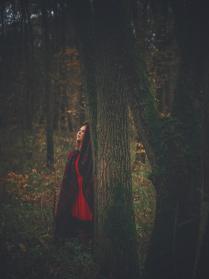 Где-то в лесу...