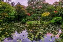 Японский Парк   Москва