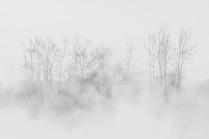 Туманная акварель