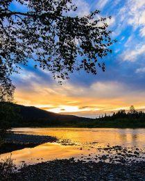 Золотая река