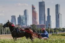 Центральный Московский ипподром