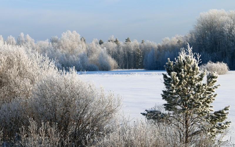 Зимушка зима.