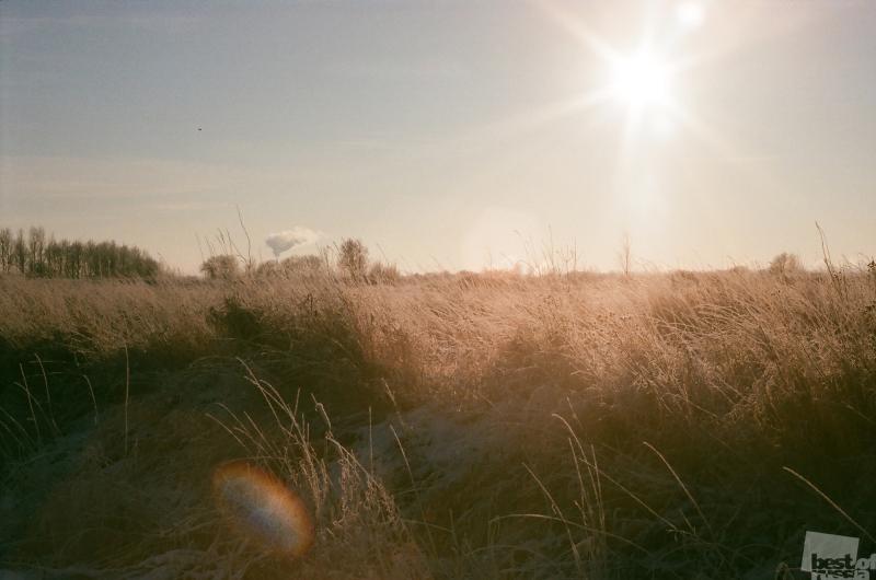 Дыхание спящих полей