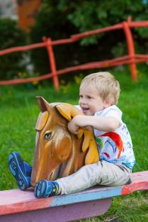 Вези меня, моя коняжка