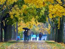 осень в парке Дружбы