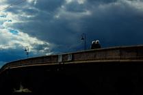 двое на мосту