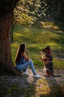 Верный друг