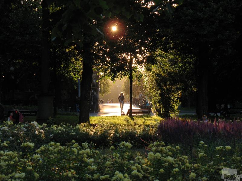 в Парке Горького