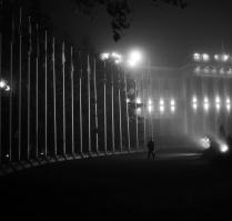 В туманном свете