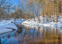 Течет река