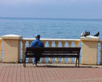 Море, птицы, человек