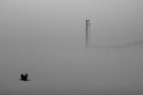 Крымский туман