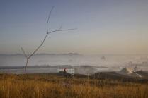 Крымское утро