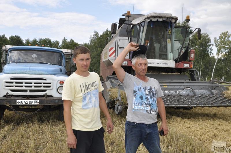 Зерно в колосу - поспеши сжать полосу