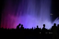 Вечер в Олимпийском парке