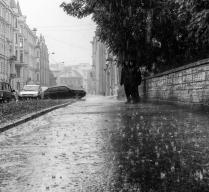 Меня ждет на улице дождь. Их ждет дома обед...