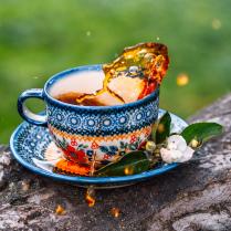 Чаепитие в парке