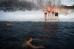 Заплыв моржей