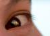 Красота в глазах смотрящего