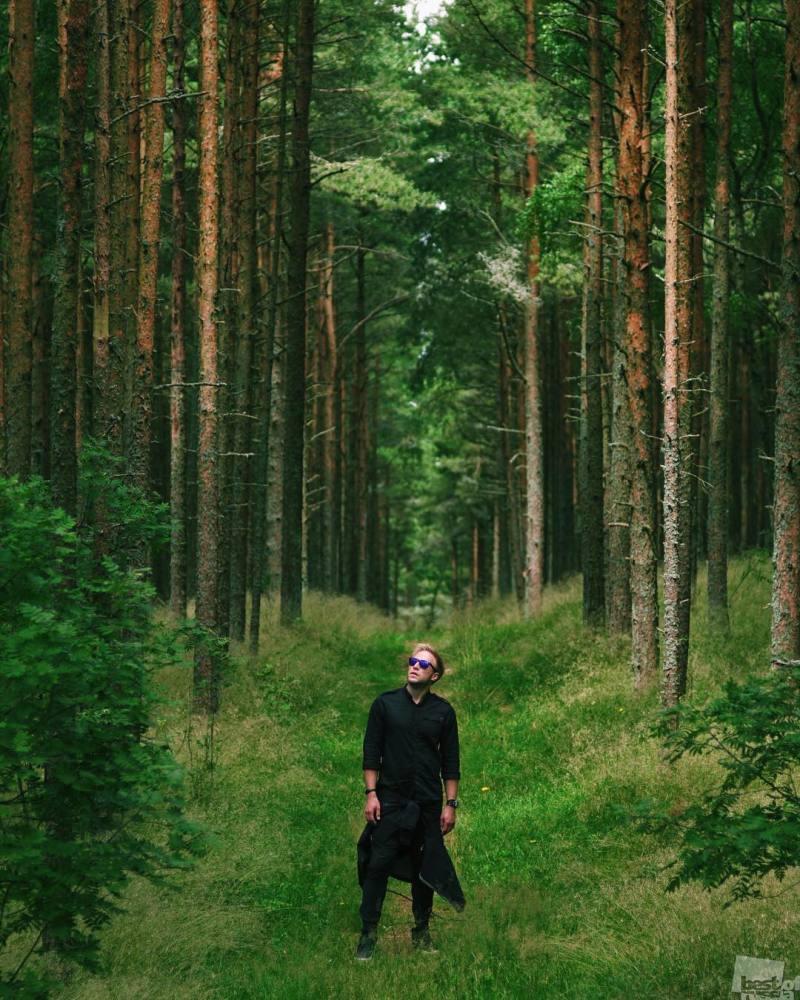 Лес Куршской косы