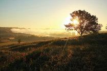 Рассвет на Кудыкиной горе