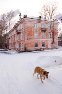 Цвета кирпичных оттенков зима